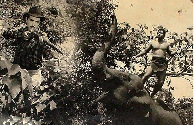 Tarzan and Circus copy
